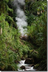 Dominica rt  (12) (681x1024)
