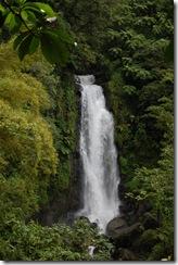 Dominica rt  (152) (681x1024)