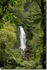 Dominica rt  (153) (681x1024)