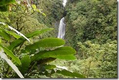 Dominica rt  (158) (1024x681)