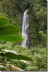Dominica rt  (165) (681x1024)