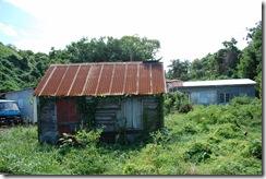 St Kitts (32) (1024x681)