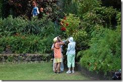 St Kitts (371) (1024x681)