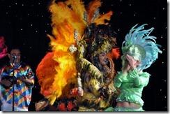 Manaus Folk Show  (317) (640x425)