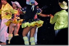 Manaus Folk Show  (56) (640x425)