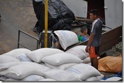 Manaus Work Day (6) (1024x680)