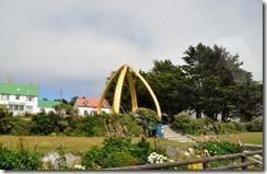 Falklands Feb 10 (13) (1024x662)