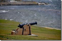 Falklands Feb 10 (16) (1024x677)