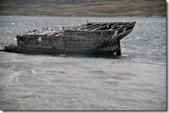 Falklands Feb 10 (28) (1024x680)