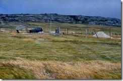 Falklands Feb 10 (32) (1024x667)