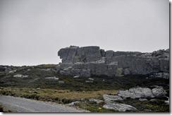 Falklands Feb 10 (34) (1024x680)