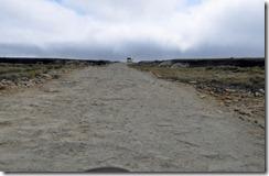 Falklands Feb 10 (36) (1024x667)