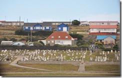 Falklands Feb 10 (6) (1024x653)