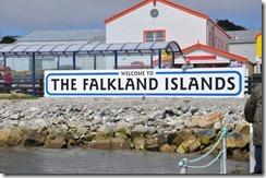 Falklands Feb 10 (7) (1024x680)