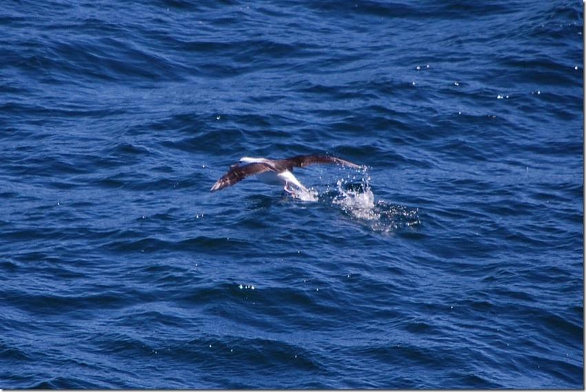 feb 19th at sea (12) (1024x682)