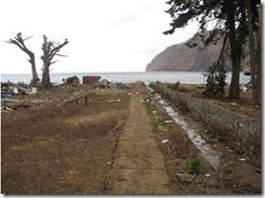 Isla Robinson Crusoe Feb 22  (40)