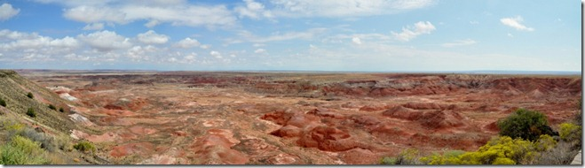 Day 5, Painted Desert, Petrified Forest National Park (3/6)