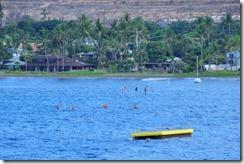 Maui  (10) (800x532)