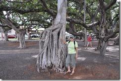 Maui  (20) (800x531)