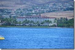 Maui  (7) (800x531)