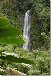 Dominica rt  (165) (851x1280)